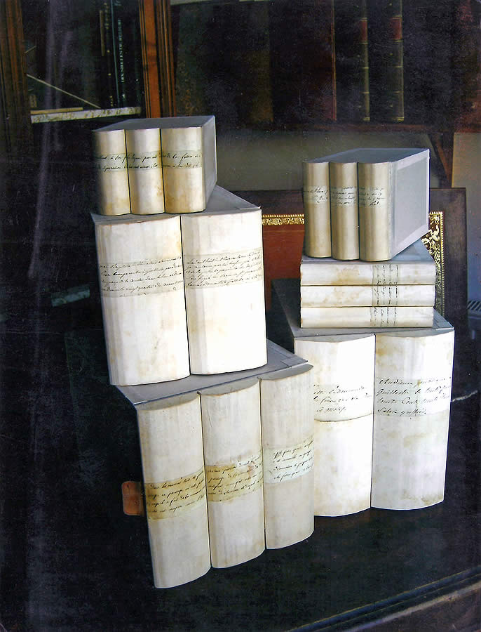 Boites sur mesure pour décor de bibliothèque